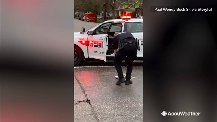 A skunk gets into a stinky situation...gets help from police