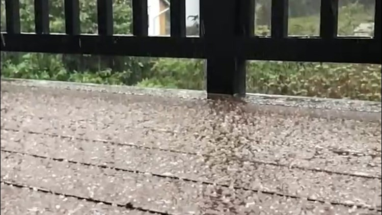 Parts of Washington hit with hail and sleet