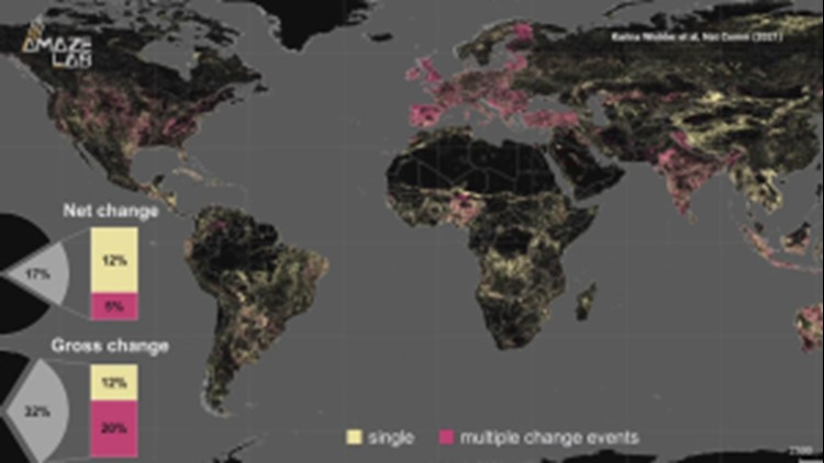 One-fifth Of Earth's Land Has Been Repurposed in 60 Years