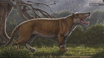 This Newly-Discovered Ancient Predator Was Bigger Than a Polar Bear