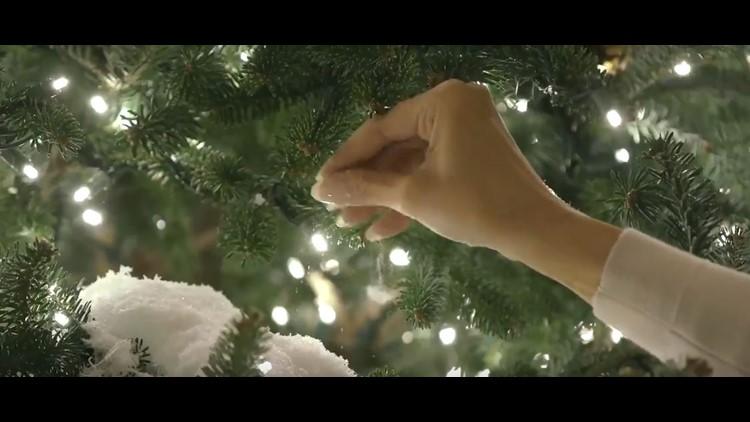 Twitter/FLOTUS Melania Christmas