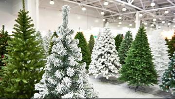 Christmas tree farmers combat popularity of fake trees