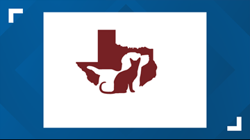 Aggieland Humane Society Offers Free Adoptions for Veterans