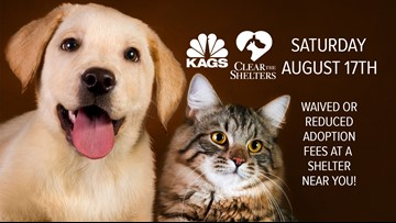 Help KAGS Clear the Shelters Saturday