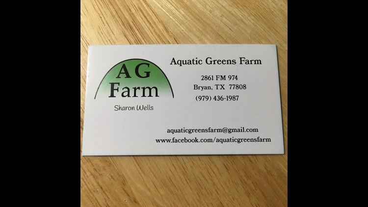 Aquatic Greens Farm hit hard by winter storm
