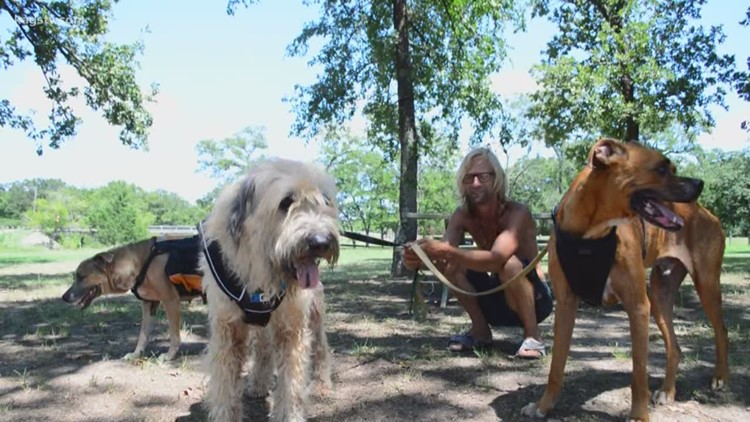 UPDATE: Local Homeless man's dog gets adopted