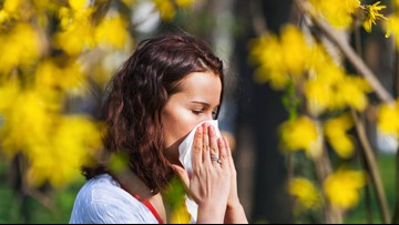 Texas ENT allergy physician addresses allergies in the Brazos Valley