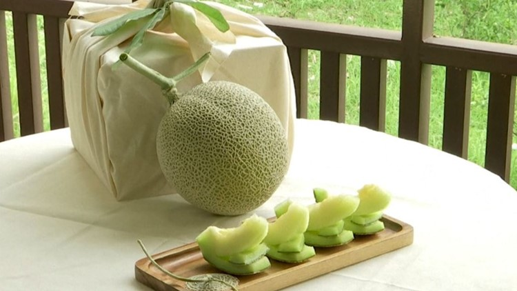 How much would you spend on these nice melons?