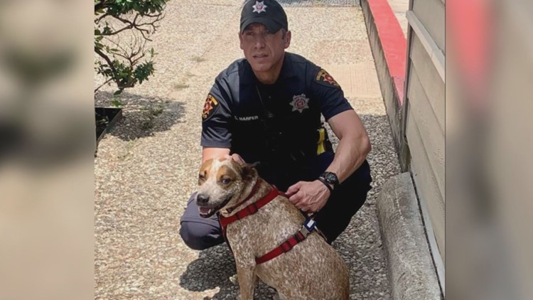 College Station officer helps people, pets evacuate from Harvey Road apartment fire