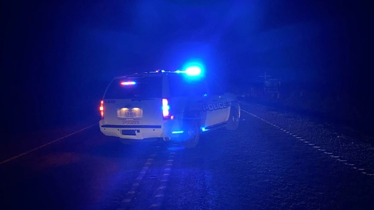 Pedestrian hit by alleged drunk driver on S Texas has died