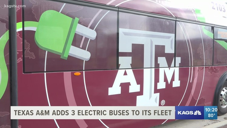 BEEP BEEP! Texas A&M's electric buses are ready for the road