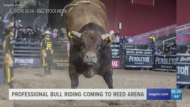 Professional Bull Riding's