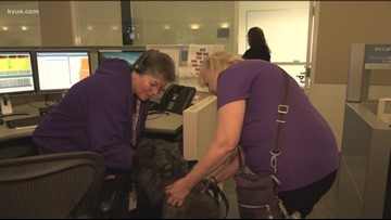 Therapy dogs providing stress relief to Austin's 911 call takers